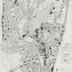 成田市中心部土地利用図